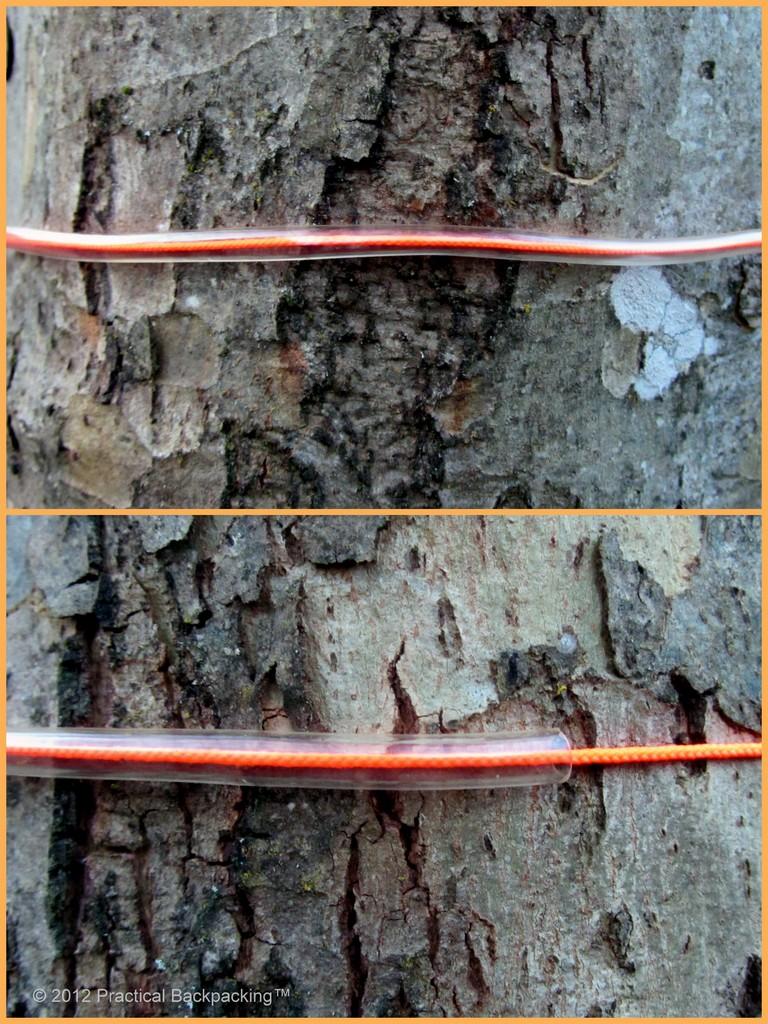 Tree Protectors